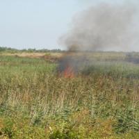 San Foca, incendio nella palude di Cassano