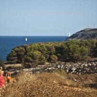 Incendio all'Orte, in fumo la macchia mediterranea e la pineta