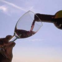 """Due vini DOC in più nel Salento: Negroamaro di """"Terra d'Otranto"""" e """"Terra d'Otranto"""""""