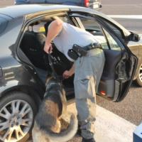 Denunciato giovane per possesso di cocaina a Poggiardo
