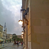 La Fondazione Capece restaurerà i grifoni del palazzo municipale