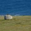 Pulizia dei litorali con ContrOnda