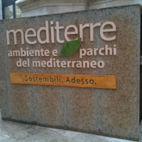 La green economy e la Puglia