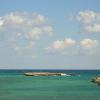 Altro spiaggiamento a Melendugno