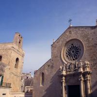 Su Raiuno domattina le magiche bellezze del Mosaico di Otranto