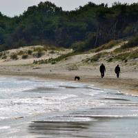 Erosione costiera, stagione a rischio: sit-in di protesta per sensibilizzare la Regione