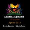 Notte della Taranta 2012, in arrivo il Concertone finale