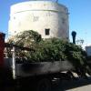 Palmariggi e l'albero di Natale dalla Statale 16