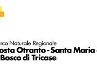 Porto Miggiano: al via un'inchiesta
